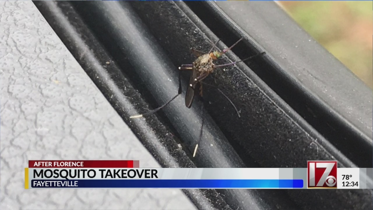 Mosquito spraying begins in Cumberland County, will continue this week