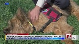 Complaints detail problems with Apex service dog company