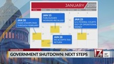 What are the next steps in the government shutdown?