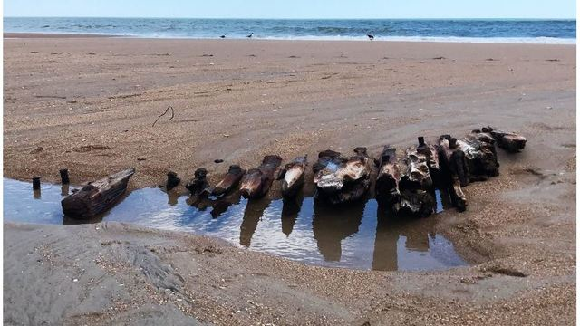 Remains of shipwreck with strange past unearthed by tide at NC coast