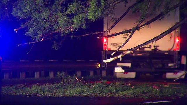 BREAKING: Tree falls across I-440 in Raleigh, blocking lanes of traffic in westbound lanes